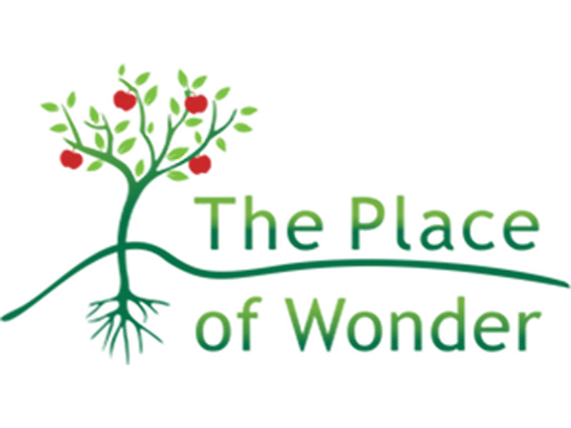 Link to The Place of Wonder website